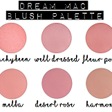 popular post dream mac blush palette